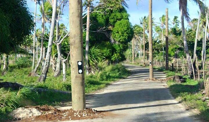 Power poles in road