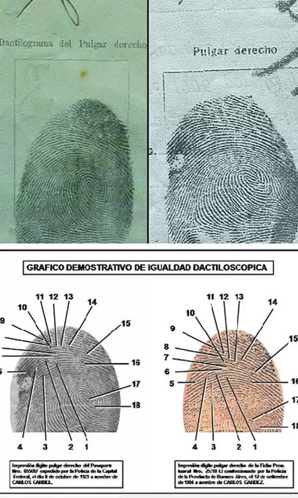 ¿Carlos Gardel era un criminal?