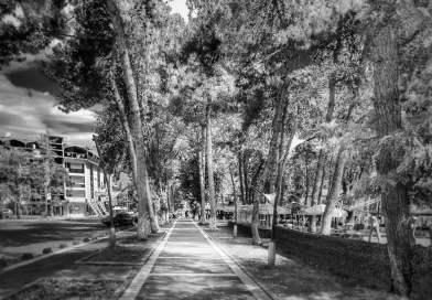 Erbaa'da bir Yaz Seyahati: İkincil Şehirlerin Sosyolojisi
