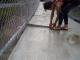 Membahayakan Nyawa dan Tidak Layak, Pekerjaan Pembangunan Jembatan Gantung Muzoi di Nias Utara Harus Dievaluasi. – Foto: Kondisi Jembatan Gantung Sungai Muzoi di Kabupaten Nias Utara. (Ist)