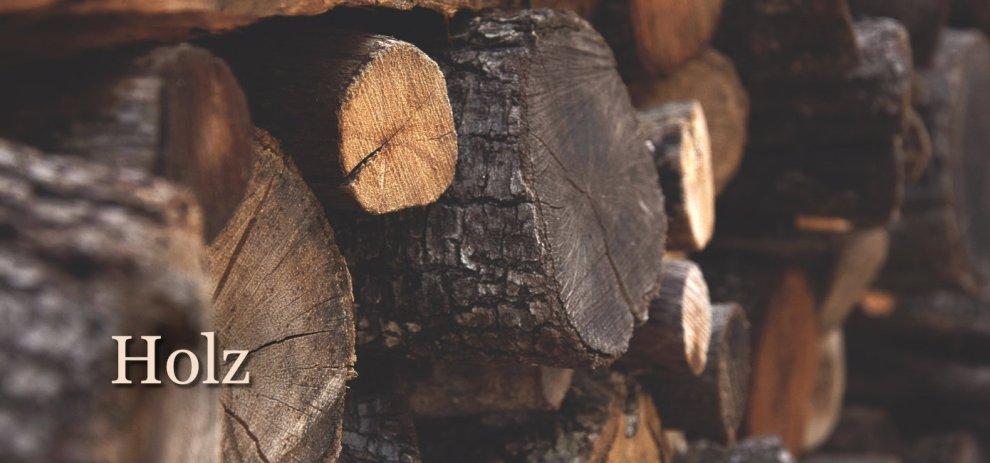 [Worldbuilding] Die Bedeutung und der Nutzen von Holz in all seinen Formen
