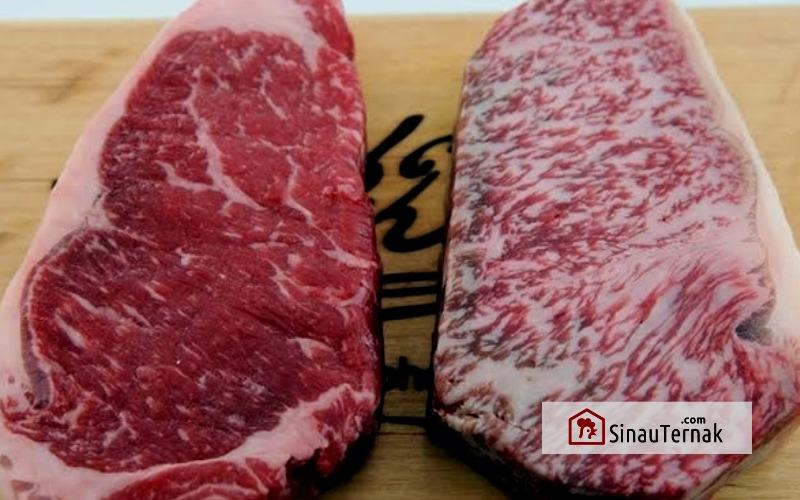 cara membedakan kualitas daging sapi sinauternak