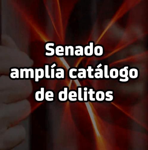 8 Agosto Senado 1