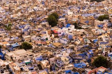 #Día 12 - Las casas azules de Jodhpur