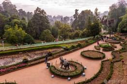 #Día 24 - Jardín Botánico de Ooty
