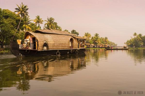 #Día 27 - Backwaters de Kerala