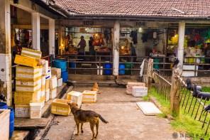 #Día 39 - Mercado de Kandy