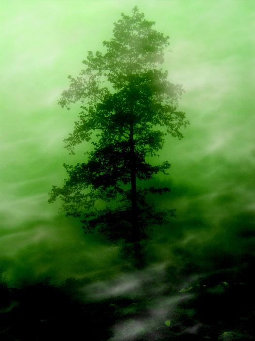 پشت مه