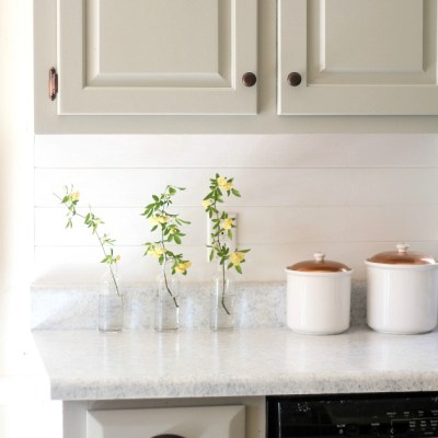 How To Update Your Old Counter Tops For Under $100