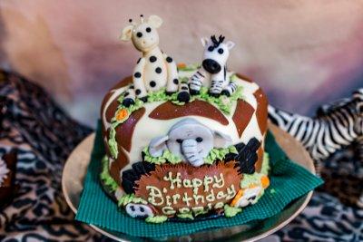 Birthday Party At The San Antonio Zoo