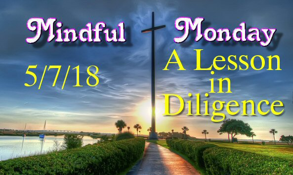 Mindful Monday Devotional – A Lesson in Diligence!
