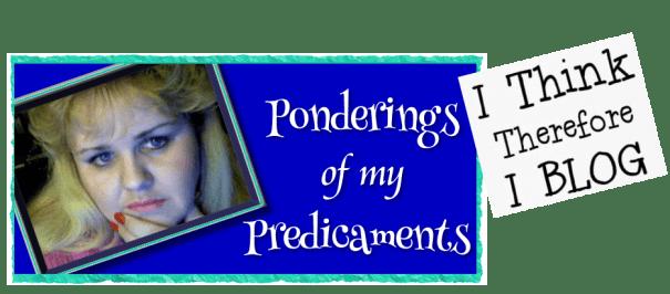 Ponderings of My Predicaments June 27 2018
