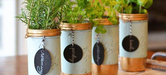 Mason Jar Herbs