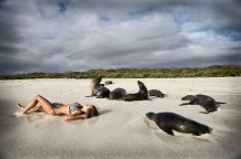 Galapagos islands, Ecuador. I'd love to go and interact with the animals there. They're not afraid of people!!