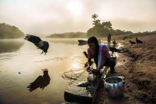 """Women bathe in the river and clean fish once the fog is gone. """"Kabia!"""" is a collective wish for a good day and for the sky to clear. The Indians go up prepare lunch - monkey meat and manioc flour. """"We are the tortoise and the government is the tapir,"""" concludes Solano Akay Mundurukú, chief of Waro Apompu village, after telling a story in which the tortoise waits patiently for the right time to attack its enemy."""