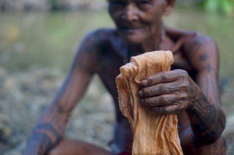 Aman Poto shows off his freshly made fabric made from bark. Copyright: Palmer Keen