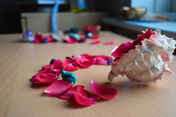 mermelada de pétalos de rosas receta 1