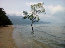 Playa Tioman