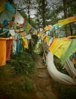 Sichuan - Camino señalado con banderas tibetanas