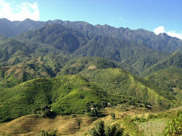 Sapa rice terraces Terrazas de arroz scaled - Sapa rice terraces, 2-day trekking: my experience