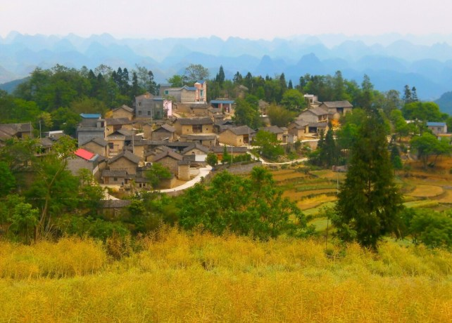 Luoping Hundreds Thousands Hills  500x358 - Guide to what to see in Luoping: Ocean of flowers