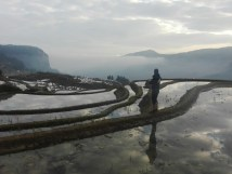 Terrazas de arroz de Duoyishu