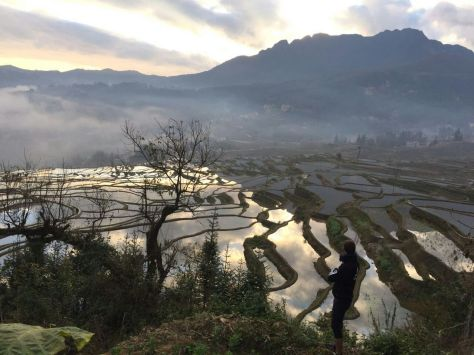 Viaje a Yunnan - Terrazas de arroz de Yuanyang