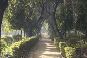 Parque Delhi