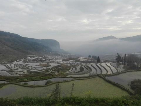 Yuanyang - Terrazas de arroz de Duoyishu