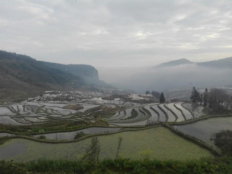 Viaje a China - Yuanyang - Terrazas de arroz de Duoyishu