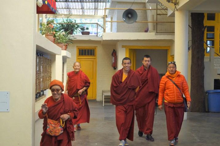 McLeod Ganj - Monjes budistas