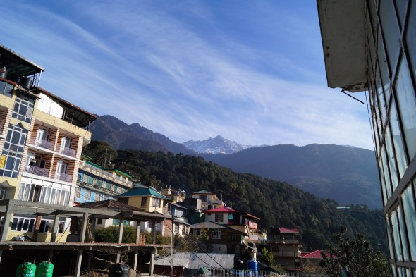 McLeod Ganj Pico Dhuala Dhar 500x333 - What to do in McLeod Ganj? Travel guide & Attractions