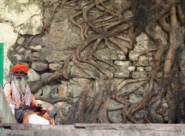 Rishikesh Gurú sentado 500x368 - Viaje a Rishikesh: historia, dónde hospedarse y qué ver