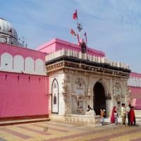 Bikaner y el curioso Templo de las Ratas