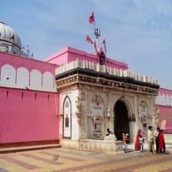 Bikaner - Templo de las Ratas (Karni Mata)