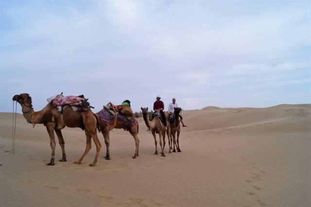 Jaisalmer Safari desierto Thar 07 1 500x333 - Jaisalmer and the Thar desert, two-day safari