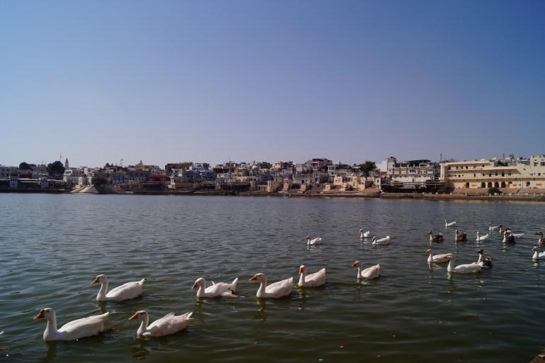 India - Lago de Pushkar