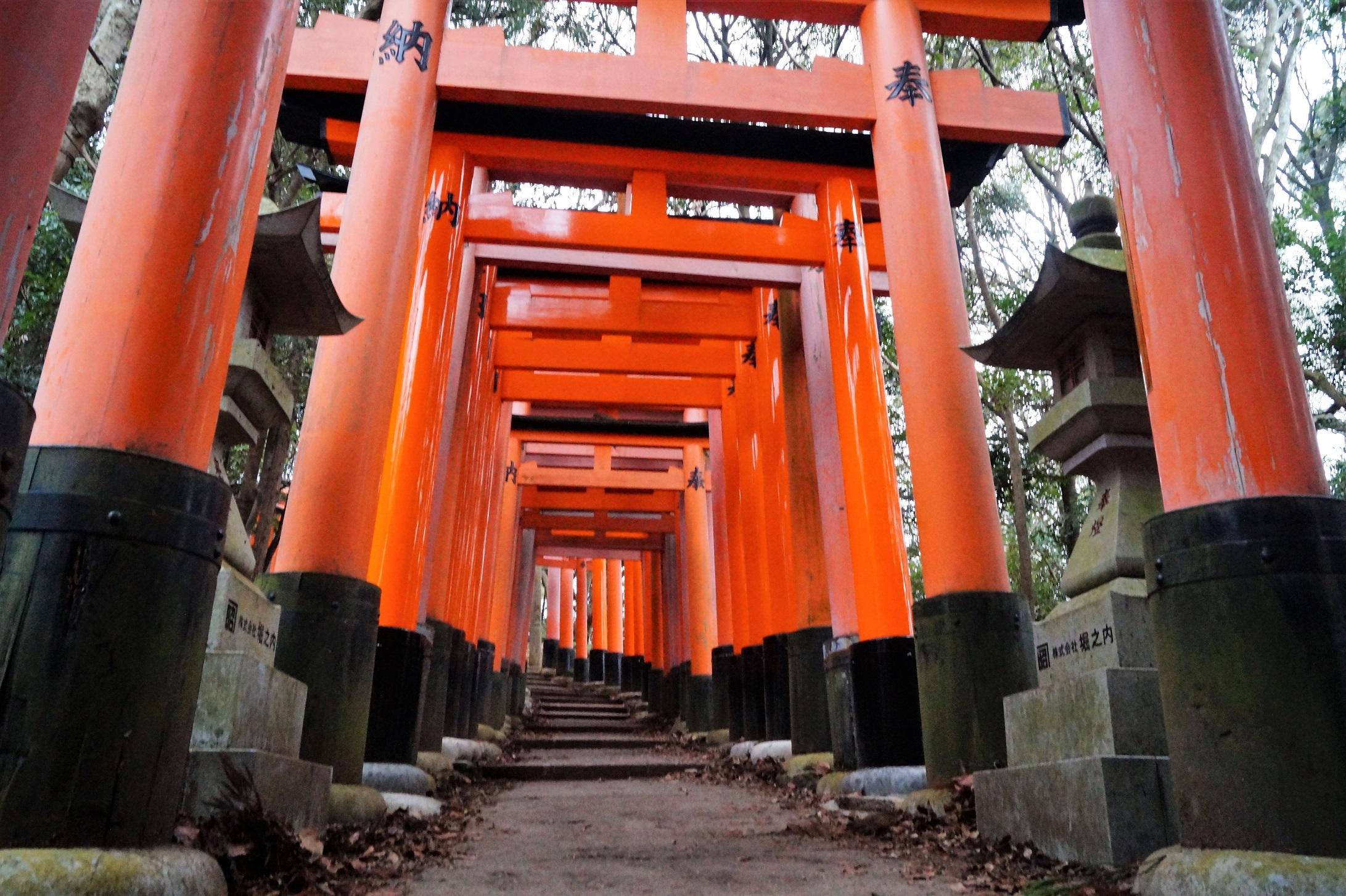 4 days in Kyoto - Fushimi-Inari Taisha - Camino de Toriis