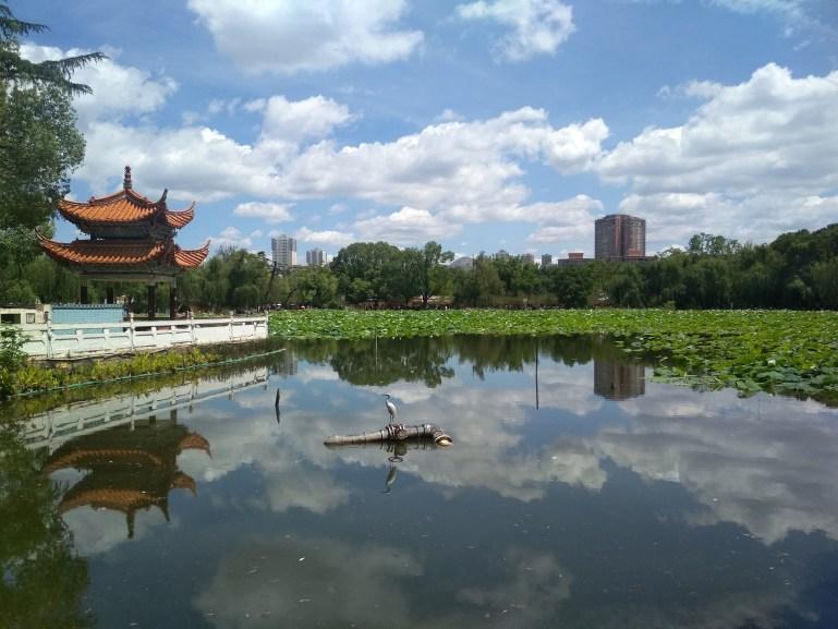 Viaje organizado a Yunnan - Kunming - Green Lake