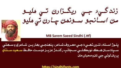 Sarem Saeed Sindhi