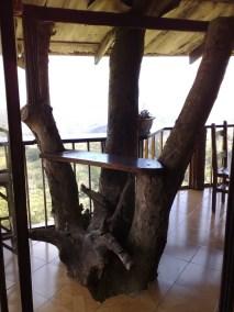 Baum im Haus