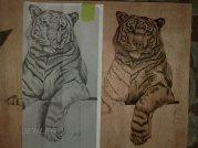 tiger in holz gebrannt