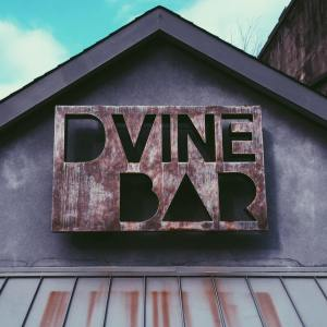 DVine Bar - Sparkill, NY