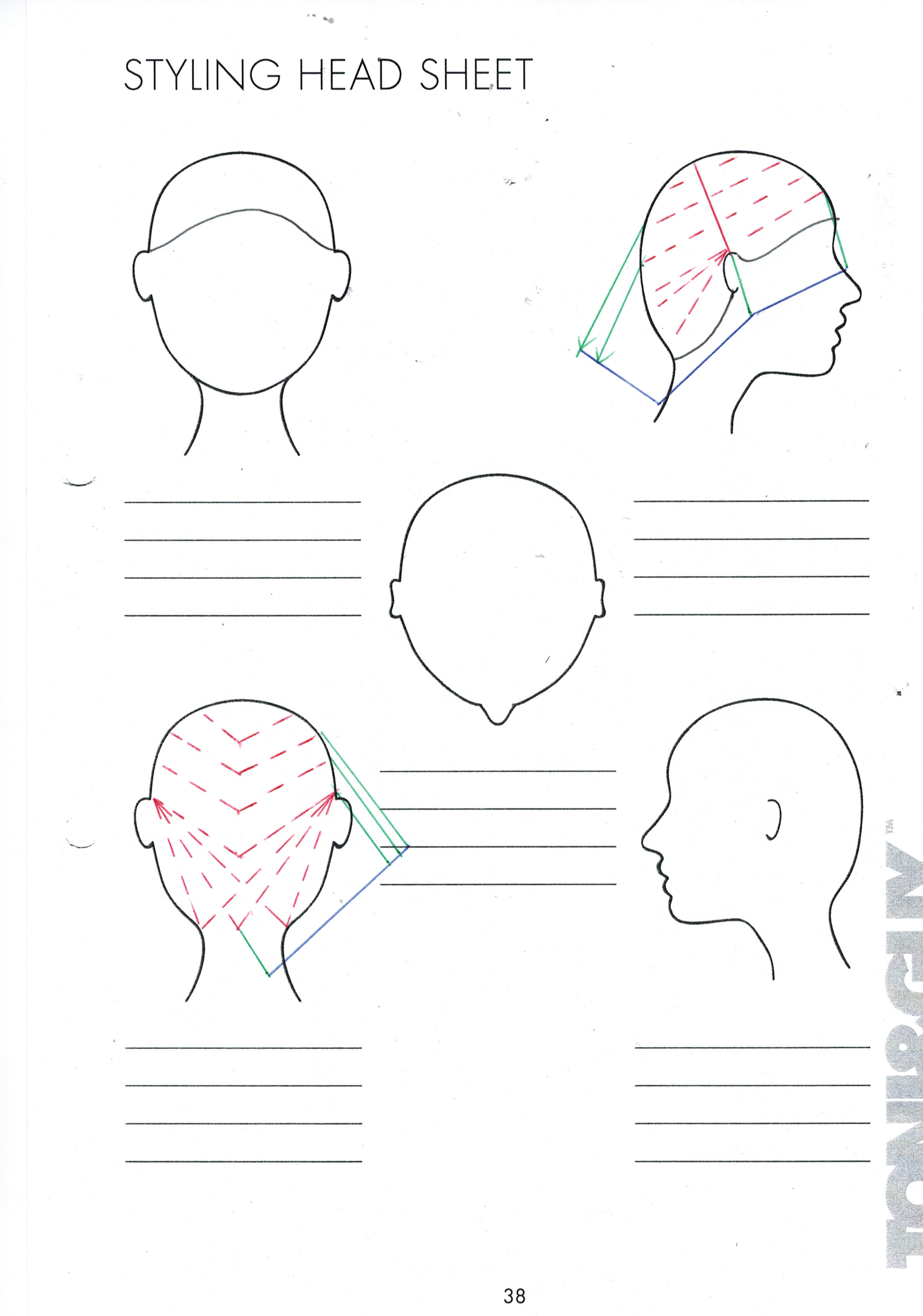 blank head diagram