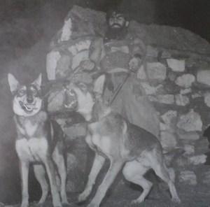 kopekler-nasil-bulundu Müthiş Köpekler