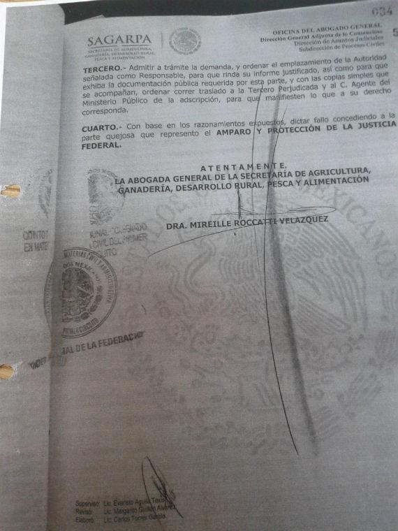Uno de los recursos de amparos firmado por Mireille Roccatti. Foto: SinEmbargo, especial