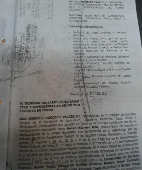 Parte del expediente al que SinEmbargo tuvo acceso. Foto: Especial