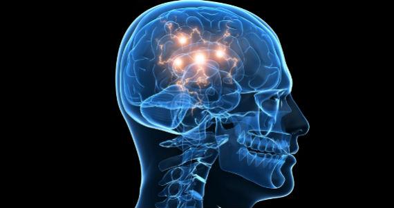 La importancia de descansar: 5 procesos que tu cerebro hace mientras estás  durmiendo   SinEmbargo MX