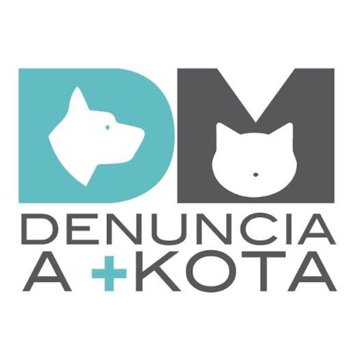 """La activista explica que al darse a conocer las irregularidades en las tiendas, la organización toma fuerza, """"porque van a entrar nuevos delegados, nuevos diputados y es empezar a trabajar con ellos"""". Foto: Denuncia a +KOTA."""