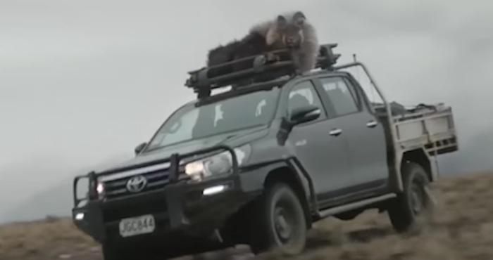 Así publicita Toyota su nueva camioneta. Foto: Especial
